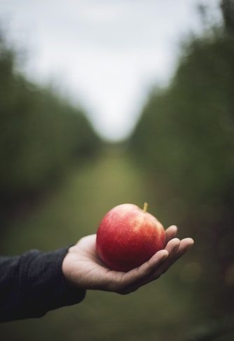proprietà cosmetiche della mela