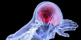 Alimenti che migliorano la memoria