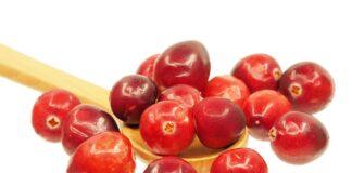 cranberry o mirtillo rosso