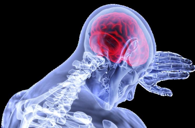 coronavirus e cervello